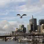 Walking around Darling Harbour