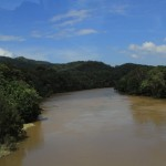High rivers on the way to Port Douglas