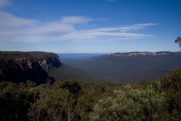View from above Wentworth falls