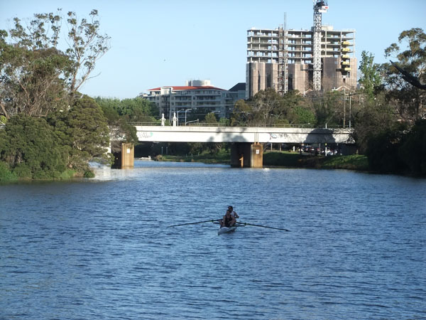 Rower on the river