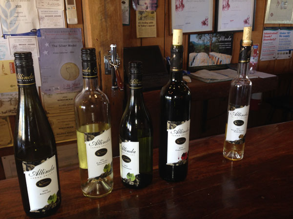 Wines at Allinda